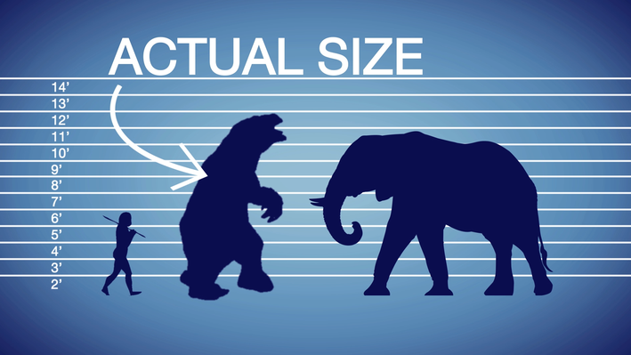 The Giant Ground Sloth | Teachable Moment