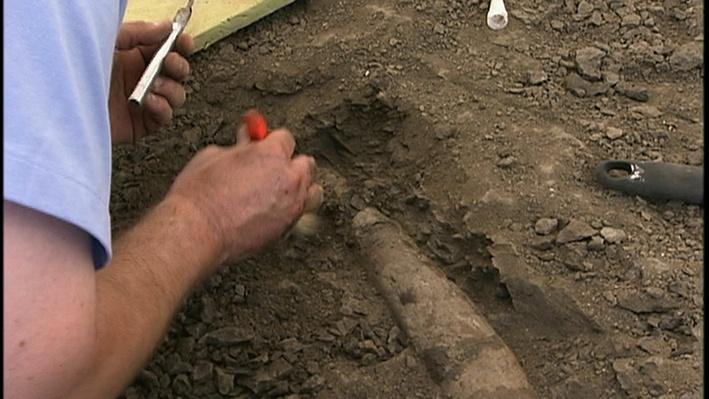 South Dakota Dinosaur Dig | Indiana Expeditions