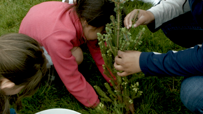 Planting the Seeds of Place-Based Education for Future Generations