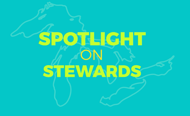 Spotlight on Stewards Curriculum