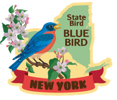 New York State Travel Stickers