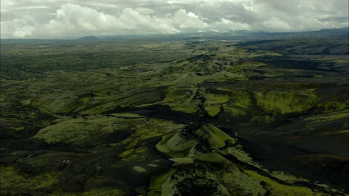 Life on Fire: Fauna and Volcanoes