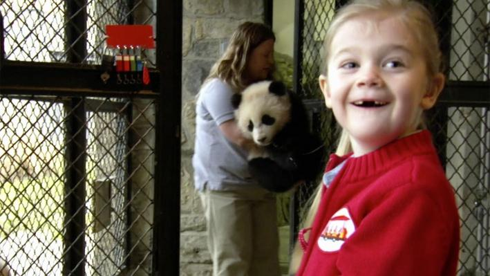 The Baby Panda at the Zoo | Daniel Tiger's Neighborhood