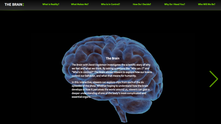 The Brain with David Eagleman | Interactive