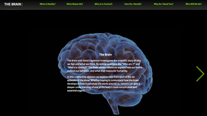 The Brain with David Eagleman | Interactive | PBS LearningMedia