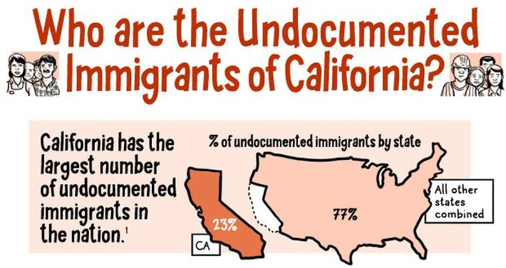 The Lowdown | Who Are California's Undocumented Immigrants? A Cartoon Explainer