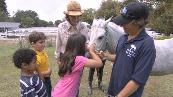 Horse Farm Field Trip