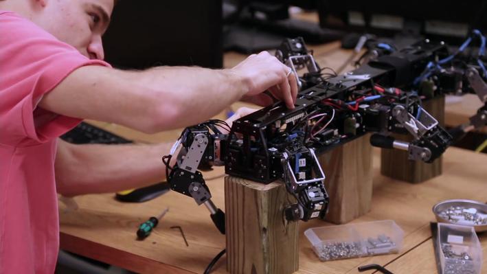 Biomorphic Robots