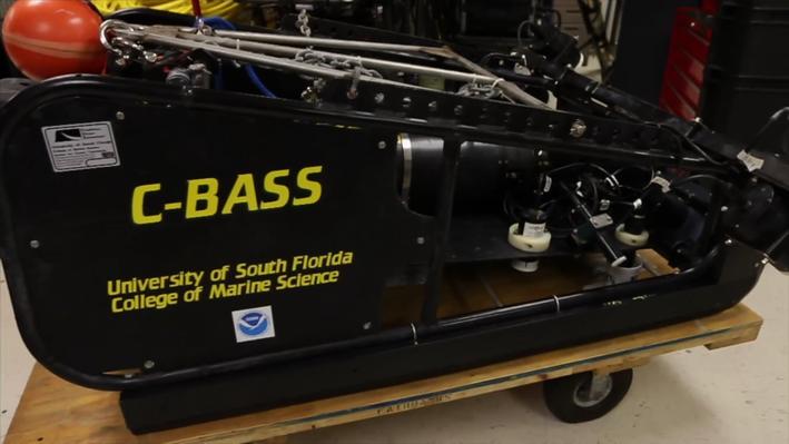 C-BASS: Revolutionizing Fish and Ocean Habitat Management