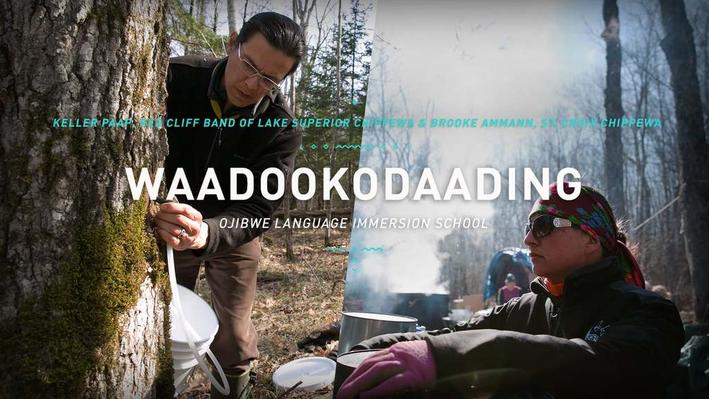 Waadookodaading | The Ways