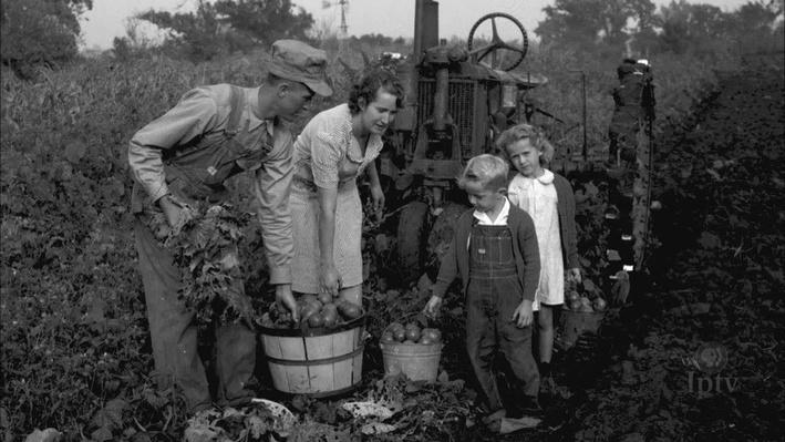 Rural Midwest Farm Life in the Early 20th Century | Wettach