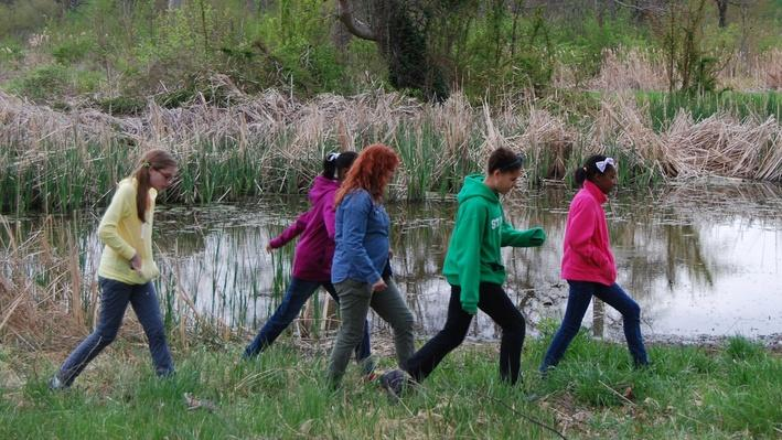 SciGirls | Wetland Band