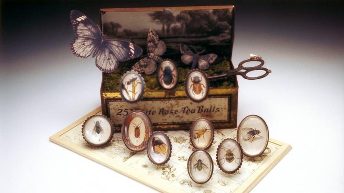 "Roberta and David Williamson, ""Insect Collection"" 