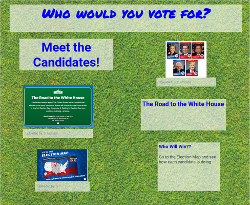 Who Would You Vote For?