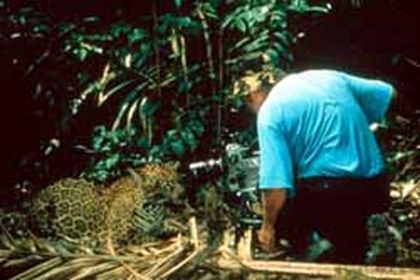 Journey Into Amazonia | Teacher Resources