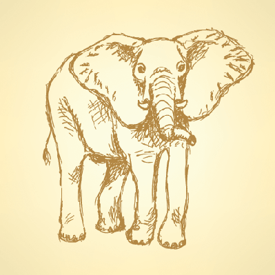 Sketch: Elephant | Clipart