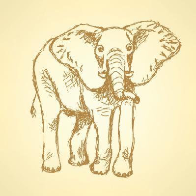 Sketch: Elephant | Clipart