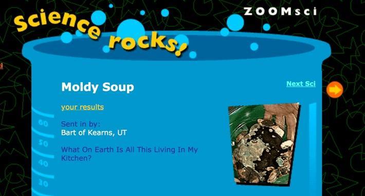 Moldy Soup