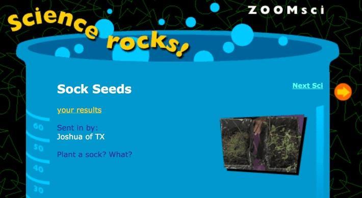 Sock Seeds