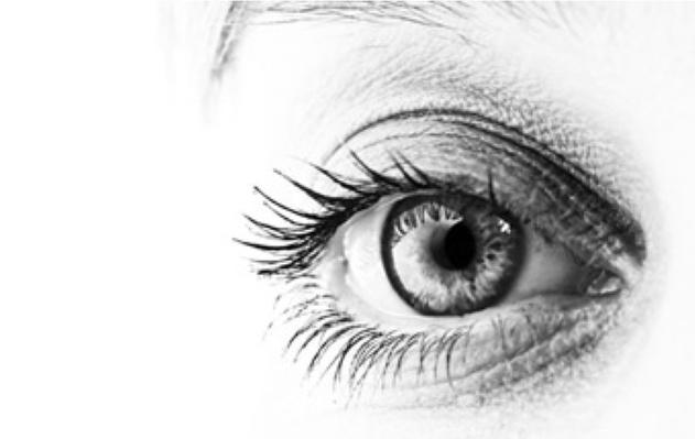 NOVA scienceNOW | Change Blindness