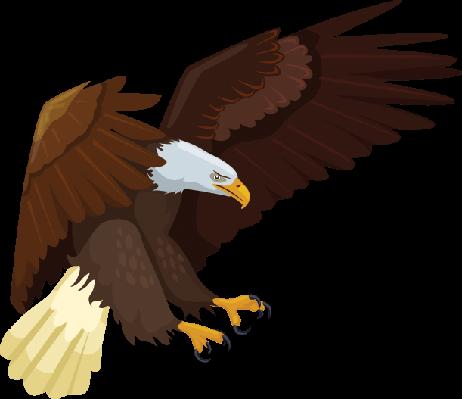 Eagle | Clipart