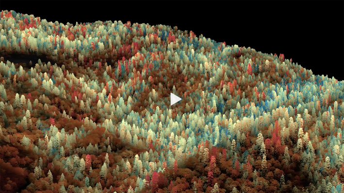 The Color of Drought | Science Visualization