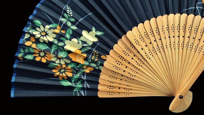 Blooming Flower Fan Dance