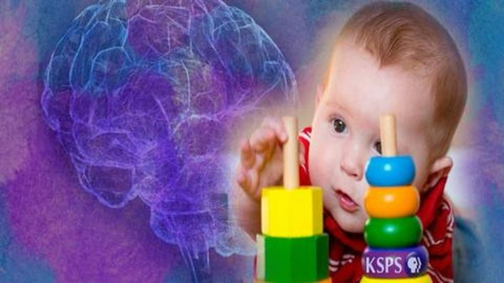 Born to Learn - Babies' Brains