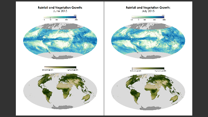 Monthly Rainfall and Vegetation Comparisons for 2015