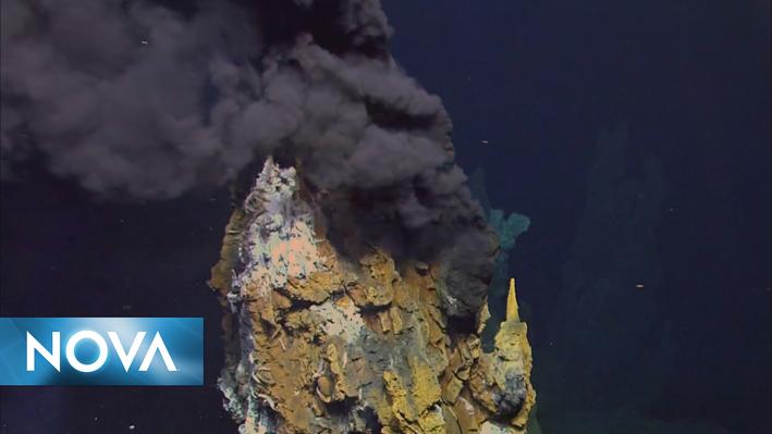 Life's Rocky Start | Deep Sea Vents