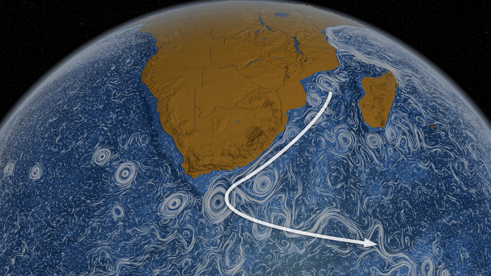 Perpetual Ocean: The Agulhas Current