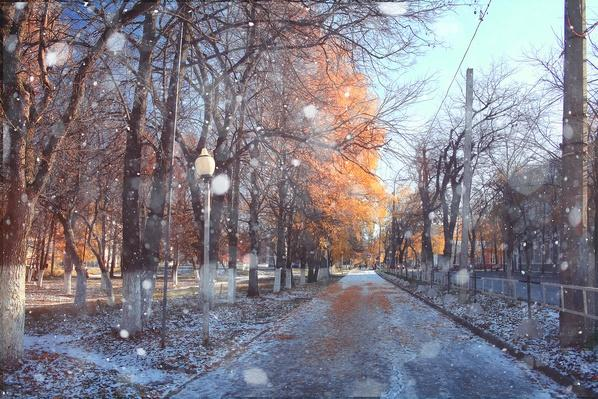 At a tree-lined park, the sun shines as snow flurries fall, leaving a light covering of snow on the shaded grass areas.
