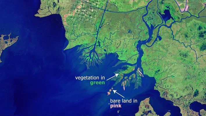 Examining the Atchafalaya Bay Deltas