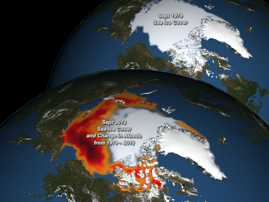 Albedo Decrease Linked to Vanishing Arctic Sea Ice
