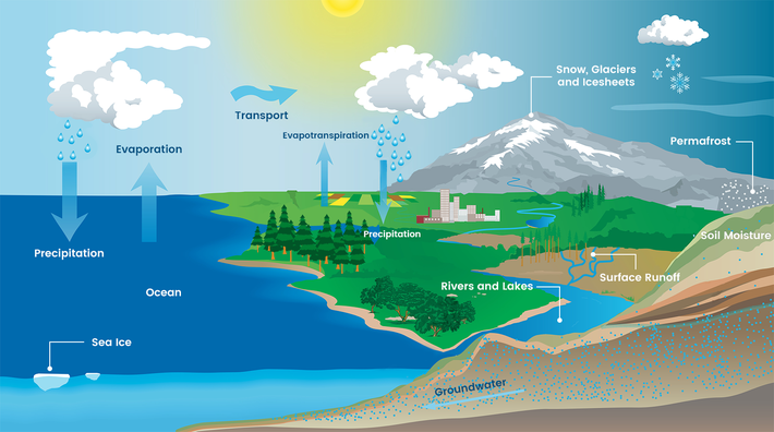 Earth's Water Movements