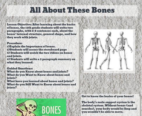 MUCI345 l Skeletal System Allison Garrett