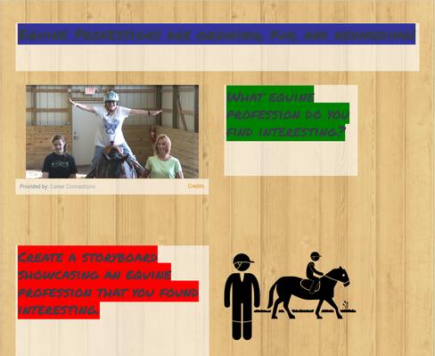 Equine Professions