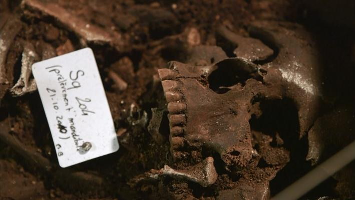 Nova: Roman Catacomb Mystery   Chapter 1: A Mass Grave Is Discovered