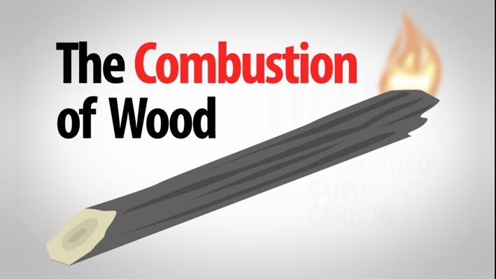 The Combustion of Wood