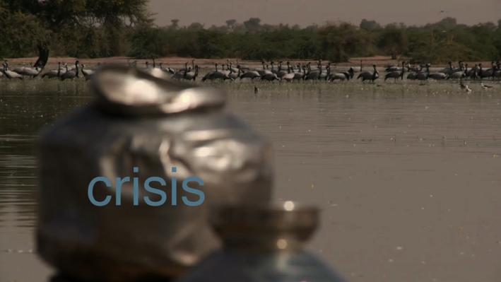 Water Pressures | Crisis