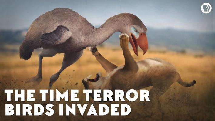 The Time Terror Birds Invaded | Eons