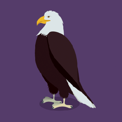 Eagle Design | Clipart