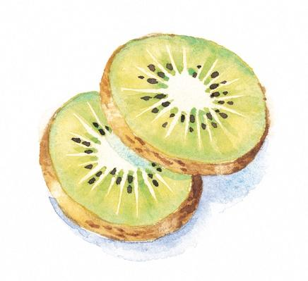 Kiwi Fruit Slices | Health and Nutrition