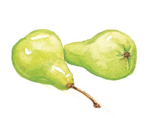 Pears | Health and Nutrition