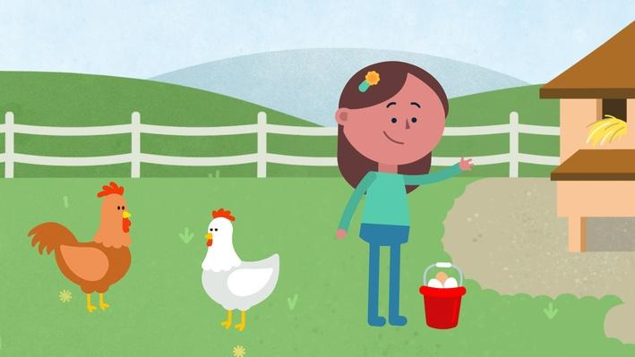 What Comes from an Egg? | Everyday Learning