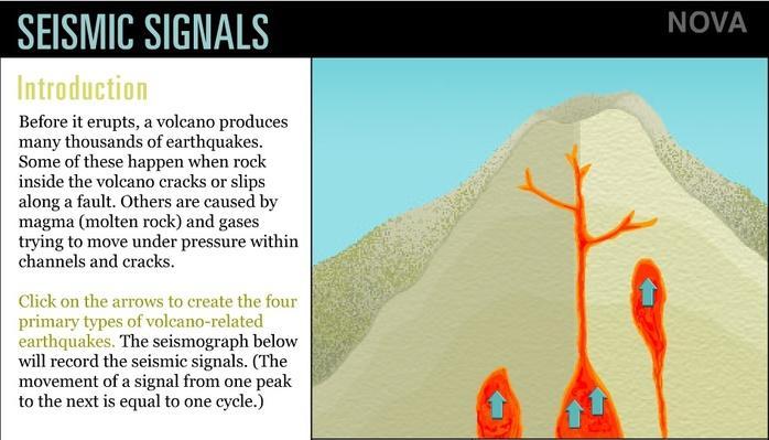 Seismic Signals
