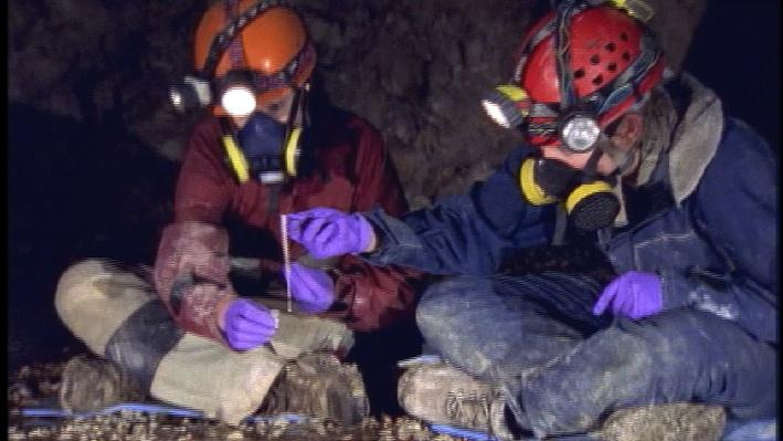Caves: Extreme Conditions for Life