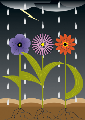 Spring Flowers - Flowers and Rain | Clipart