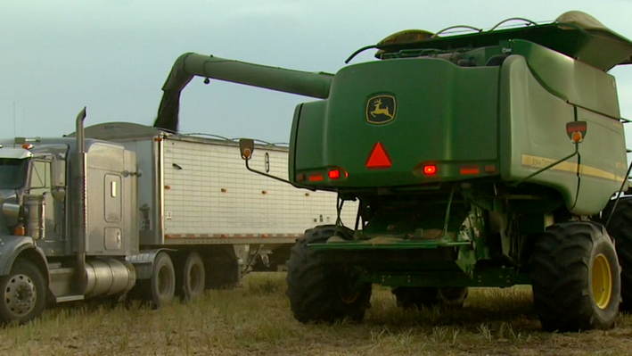 Built on Agriculture - Selkirk Settlers | Farming Economy