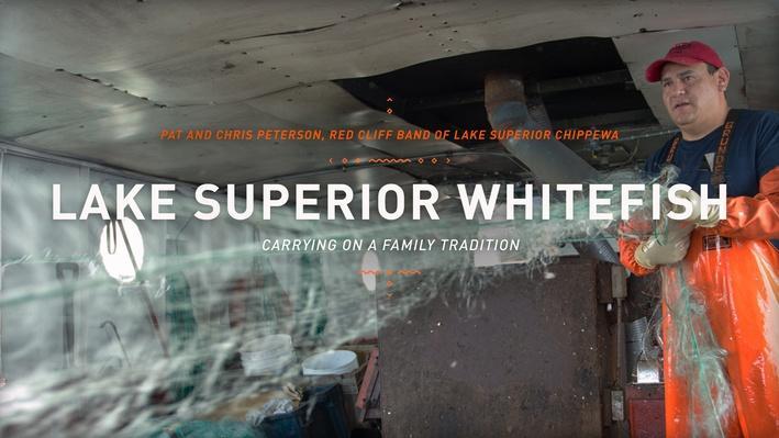 Lake Superior Whitefish | The Ways